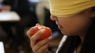 Film om tre lærere og deres engagement overfor deres arbejde på ordblinde efterskoler.