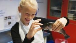 strandby skole, bellamondo films, kata fonden, naturfag, naturfagsundervisning, naturfags-lokaler, folkeskoler